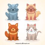 Kitten Pack by drud-studio
