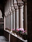 arches by jbrooker21