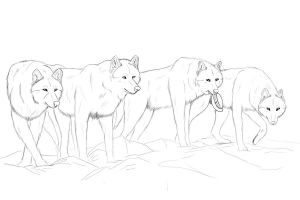the pack wip by bravo9653