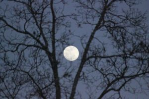 Full Moon at Twilight by Rjet33