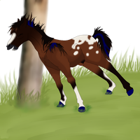 My Contest Entry For #5 Equus Ballator Foals by AkitaHaru