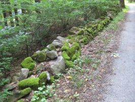 wall of moss and stone by minikozy92