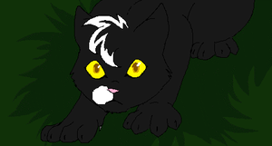 ravenpaw by mechanicalmasochist