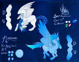 Ibby and North pony refs 2014 by swiftyuki