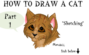 How to draw a cat part 1 by Stonekill