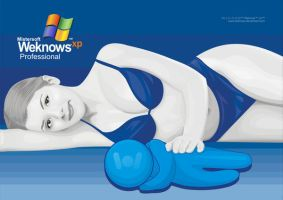 weknows XP by weknow