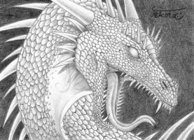 ACEO 27, Raging Dragon by Tekota
