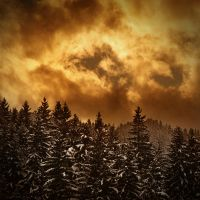 winter by maticgolob