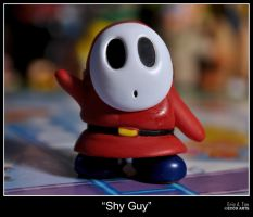 Shy Guy by eccoarts