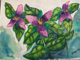 Fantasy Trilliums by AluminumSunset