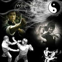 wing chun by david-timmons-art
