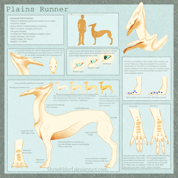 Species Reference Sheet: The Runner by shmekldorf