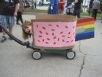AN 2011 - Nyan Cat by Tatriana