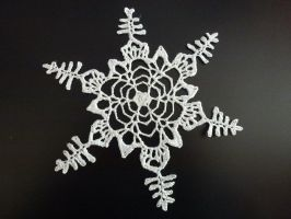 Crocheted Snowflake 2 by crocheter