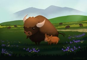 Bison at Yellowstone by squidbrains