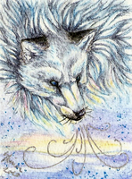 ACEO - Arctic Wind by ShadeofShinon