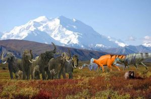 Denali BC by TroyandFriends