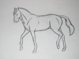 Trot Sketch -NFY by equizotical