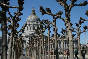 San Francisco Capitol building by nwalter