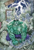 The Hulk by Eritrocina by bonisol