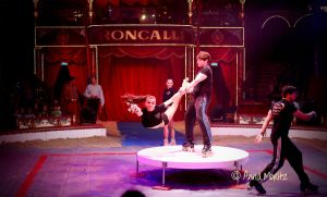 Circus Roncalli by annamnt