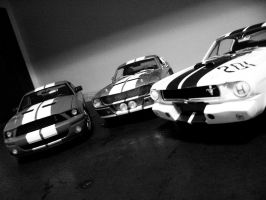 shelby mustangs by EnriqueGomez