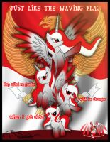 Indonesia independence day 17-8-2013 by auveiss