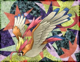 Mega Pidgeot by Macuarrorro