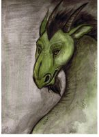 Green Dragon by Miss-Melis