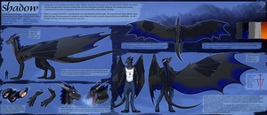 Ref Sheet Comish - Shadow by TwilightSaint