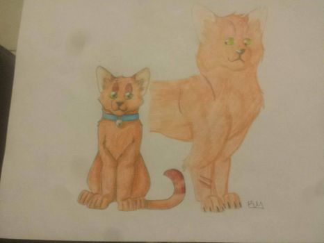 From Rusty to Firestar by skycat77