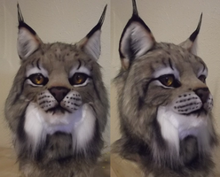 Canadian Lynx mask WIP by DreamVisionCreations
