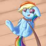 Dashie by Dbleki