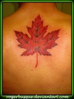 maple leaf by rogerbusque