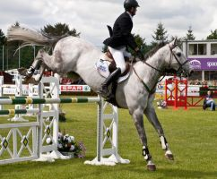 Jumping stock 30 by Kennelwood-Stock