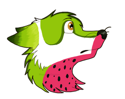 CP- watermelon by labramazing