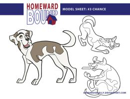 Homeward Bound Chance Model Sheet by SarahRoseKelly
