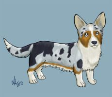 Dog week: Corgi by Laichi
