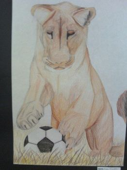 Lioness Playing Soccer by Cherokee-NRock