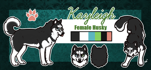 Commission - Kayleigh ref by pandapoots