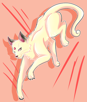 Favorite Normal Type #1: Persian by So-Many-Peaches