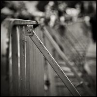 fence 3 by keithpellig