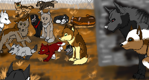 The Strays by Torntorn