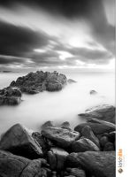 Wydup Rocks Black and White by Furiousxr