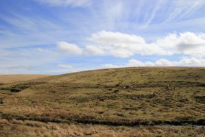 Picture of the day: Dartmoor Impression by shari81