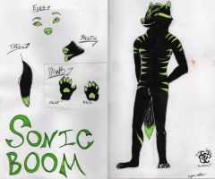 Sonic Boom Reference Sheet 3/3 by EyonSplicer