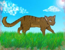 Amberheart of WindClan by AnimalLover4Ever