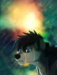 I hate the rain by Sidgi
