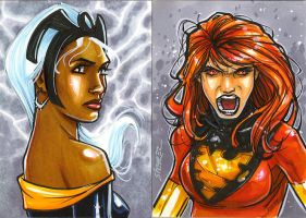 Storm and Dark Phoenix PSC by gravyboy