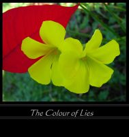 The Colour of Lies by SunOwl